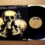 Visioni: La leggenda del beat, gli Skull Snaps (Documentary)
